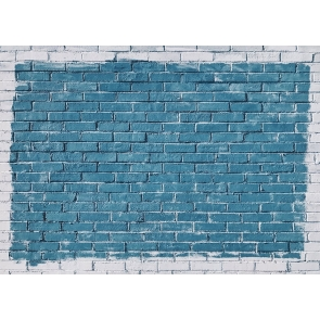 Outer Ring Grey Middle Blue Brick Wall Backdrops Studio Party Photography Background