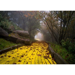 Yellow Brick Road Backdrop Scenic Stage Party Photography Background
