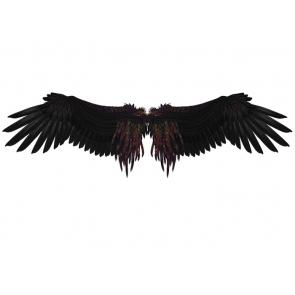 Black Angel Wings Photo Backdrop Studio Photography Background