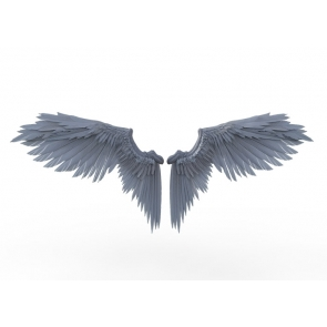 Gray Angel Wings Photography Backdrop Party Background