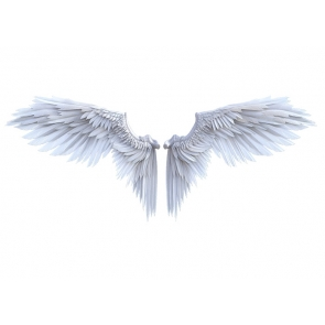 White Angel Wings Backdrop Studio Photography Background