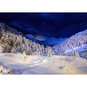 Snow Covered Forest At Night Winter Scene Backdrops Stage Photo Booth Photography Background