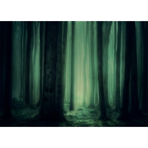 Fog Diffuse Dark Jungle Forest Backdrop Stage Party Photography Background