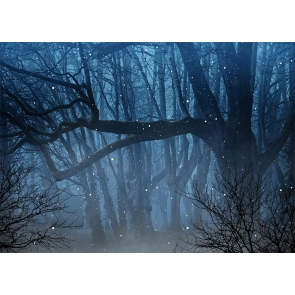 Fog Diffuse Dark Enchanted Forest Backdrop Stage Party Photography Background