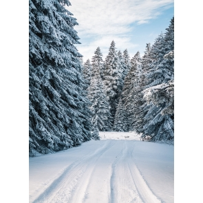 Christmas Snow Covered Forest Winter Scene Backdrop Stage Photography Background