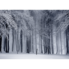 Snow Covered Forest Winter Scene Christmas Backdrop Stage Photography Background