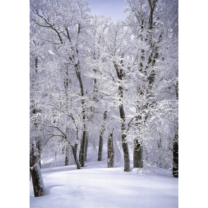 Snow Covered Forest Wonderland Winter Scene Christmas Backdrop Stage Photography Background