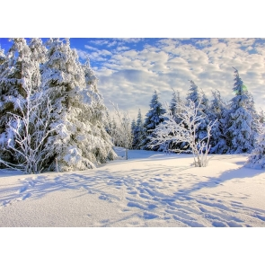 Blue Sky White Cloud Sun Rise Snow Covered Forest Scene Christmas Backdrop Stage Photography Background