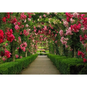 Flower Pergola Corridor Wedding Backdrop Photography Background