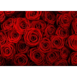 Red Rose Flower Wall Backdrop Valentines Backdrop Wedding Photography Background