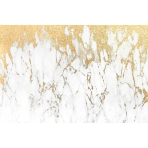 Vintage Gold And White Marble Texture Wall Backdrop Studio Photography Background Prop