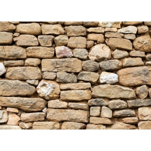 Retro Old Stone Wall Backdrop Photography Background Decoration Prop