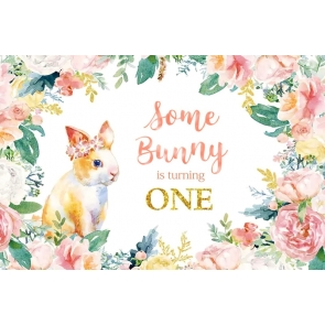 Some Bunny Is One Backdrop Happy Birthday Photography Background Decoration Prop