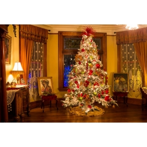 Brilliant Lights Christmas Tree Backdrop Stage Photo Booth Photography Background