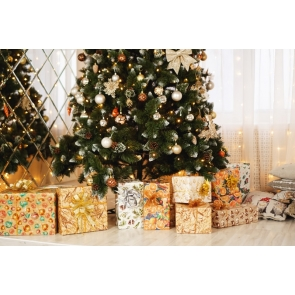 Gift Box Theme Christmas Party Backdrop Photo Booth Stage Photography Background