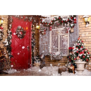 Snowflake Window Doorway Christmas Backdrop Photo Booth Stage Decoration Photography Background