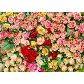 Pink Rose Flower Wallpaper Backdrop Baby Bridal Shower Floral Backdrop Decoration Prop