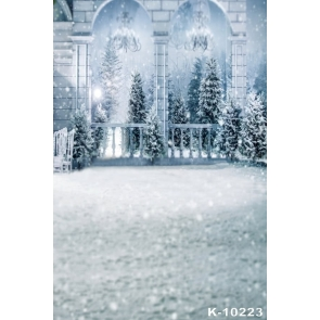Romantic Winter White Snow Palace Wedding Photography Background Props