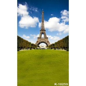 Green Grassland Eiffel Tower Scenic Backdrops for Photography
