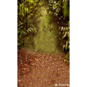 Rustic Forest Road Scenic Background Backdrops for Photography