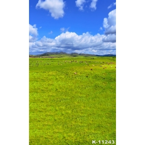 Scenic Green Prairie White Clouds Photography Backgrounds and Props