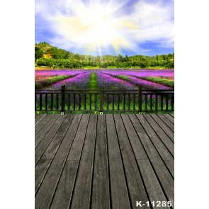 Purple Lavender Flowers Garden Scenic Photography Backdrops