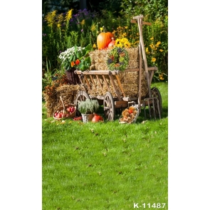 Rustic Farm Pumpkin Fruits Scenic Photography Background Props