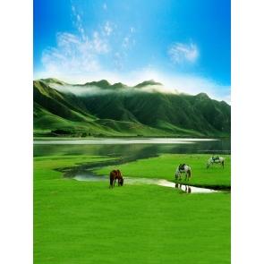 High Mountain Grassland Safari Backdrop Portrait Photography Background Prop