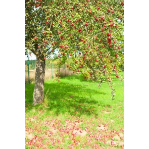 Red Apple Tree Backdrop Portrait Photography Background Prop
