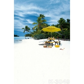 Seaside Island Beach for Picnic Backdrop Background for Photography