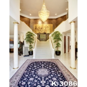 Carpet Staircase Luxury Living Room Wedding Background Light Backdrops For Photography