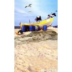Seaside Boat Seagulls Sandy Beach Backdrop Background for Photography