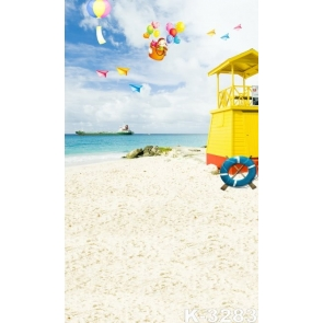 Scenic Seaside Beach Paper Planes Balloons Picture Backdrop