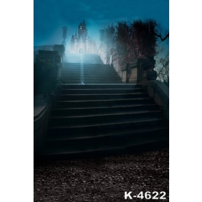 Nightscape Stairs to Castle Building Photographic Backdrops