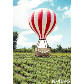 Rustic Hot Air Balloon Wedding Backdrops for Photography