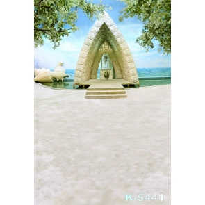 Scenic Seaside Wedding Venue Romantic Photography Photo Backdrops
