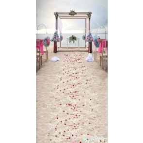 Romantic Seaside Beach Wedding Scenic Photo Drop Background
