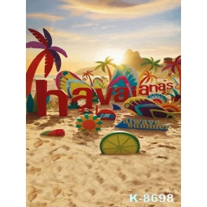 Summer Holiday Seaside Beach Professional Photography Backdrops