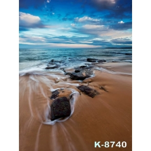 Scenic Sea Sand Beach Backdrop Background for Photography