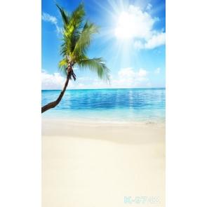 Sunny Day Blue Sky Coconut Tree Scenic Beach Studio Backdrops