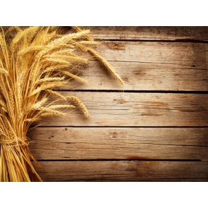 Golden Wheat Wood Backdrop Birthday Party Photography Background