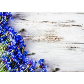 Simple Blue Flowers on Left Wood Wall Background Backdrop