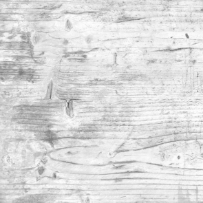 Vintage Vinyl White Rustic Wood Board Textured Backdrop Studio Photography Background Prop