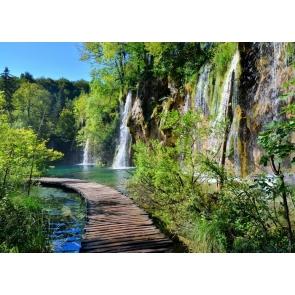 Forest Waterfall Beautiful Scenic Backdrop Photo Studio Photography Background