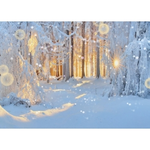 The Sun Is Covered By Snow Covered Forest White Christmas Backdrop