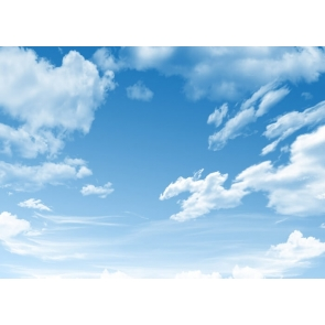 Blue Sky White Cloud Backdrop Photo Studio Photography Background