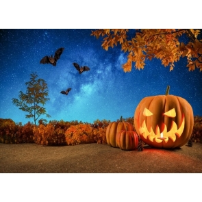 Under The Blue Starry Sky Bat Pumpkin Halloween Backdrop Party Photography Background