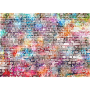 Retro Rustic Colorful Brick Wall Backdrop Video Studio Photography Background