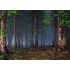 Fog Diffuse Jungle Enchanted Forest Backdrop Stage Photography Background