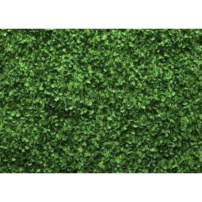 Vinyl Green Leaves Grass Wall Backdrop Newborn Baby Shower Wedding Photo Studio Photography Background Decoration Prop